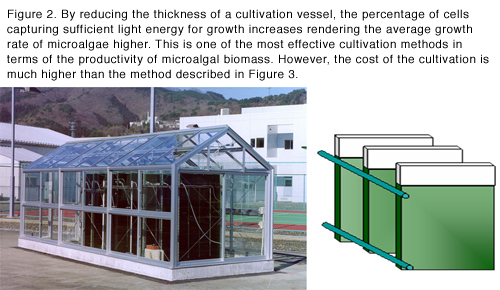 Figure 2  Vertical panel style culture device By making the thickness of the culture tank of microalgae thinner, the percentage of the cells that can absorb light increases; thus the average growth rate will increase. This is an appropriate culture method for proliferating microalgae within short time in high density. However, it is costly as compared with the method described in Figure 3.