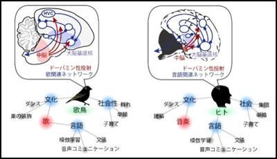 waseda_0628_figure1.jpg