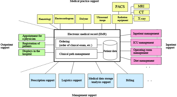 health records structures Personal health records to improve health information exchange and patient safety  james r fricton, dds, ms diane davies, md abstract  the personal health record (phr) is proposed as an innovative solution to the problems of.